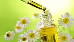 benefícios das essências florais