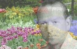 Dr Bach - o Mestre dos Florais