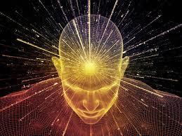como cultivar um super cérebro